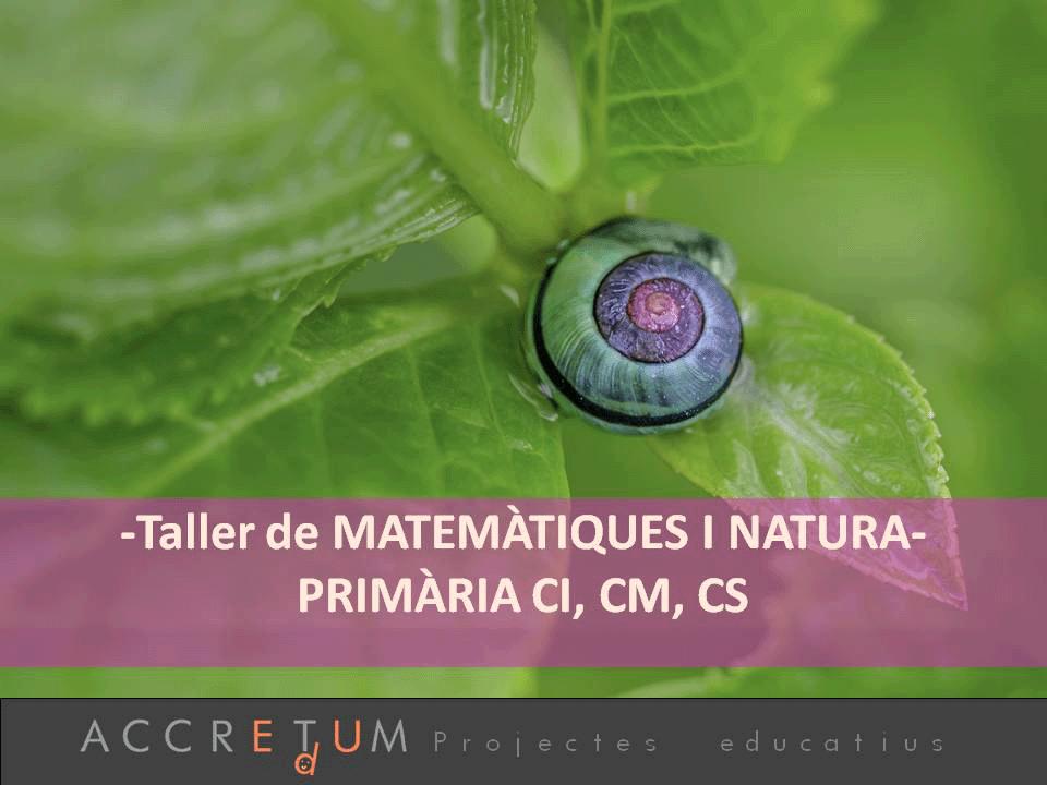 Matematiques_Natura_Accretu